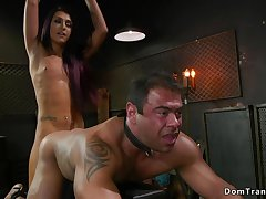 Tranny ass coition fucks muscled chained male